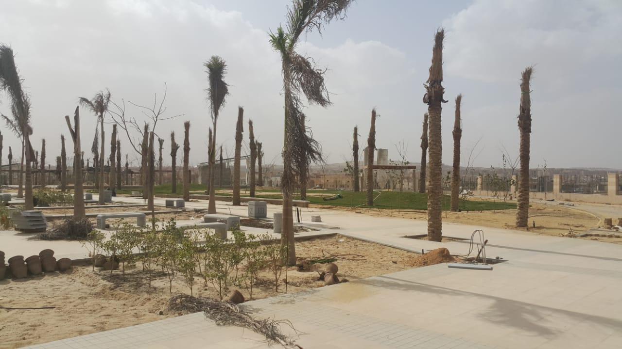 الحديقة المركزية بمدينة الشيخ زايد  (11)