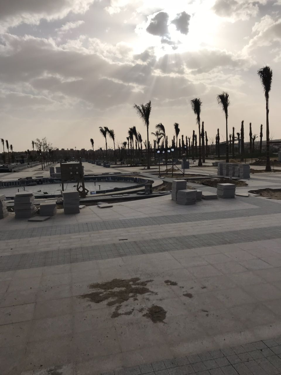 الحديقة المركزية بمدينة الشيخ زايد  (5)