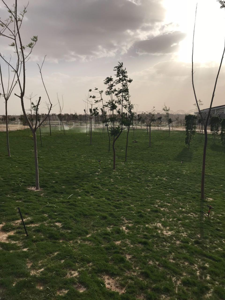 الحديقة المركزية بمدينة الشيخ زايد  (8)