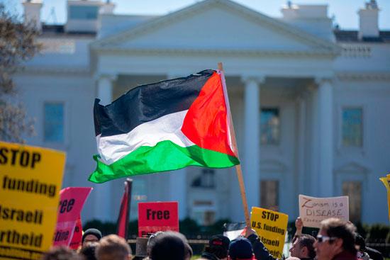 العلم الفلسطينى خلال التظاهرات