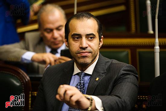 مجلس النواب البرلمان (6)