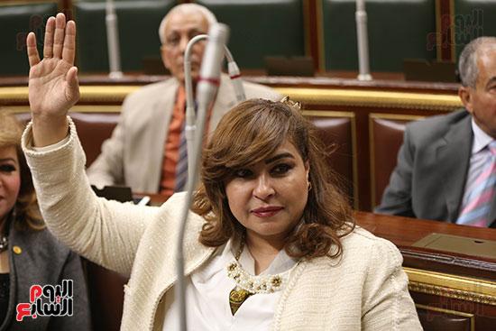 مجلس النواب البرلمان (19)