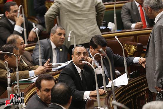 مجلس النواب البرلمان (25)
