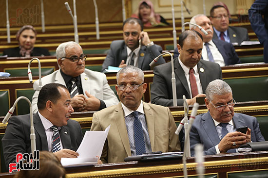 مجلس النواب البرلمان (11)