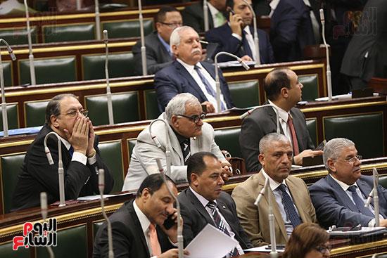 مجلس النواب البرلمان (24)