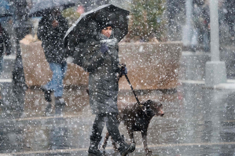 فتاة تسير بكلبها تحت الأمطار