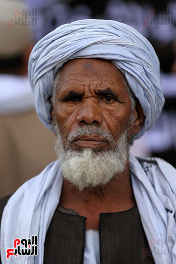 مولد الإمام الرفاعى (25)