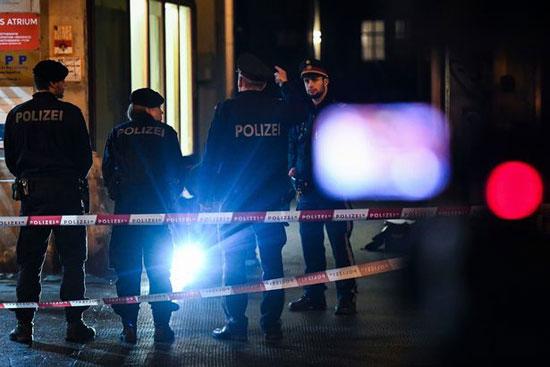 الشرطة فى فيينا