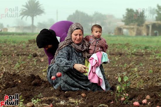 فيتشر المرأة المصرية (13)