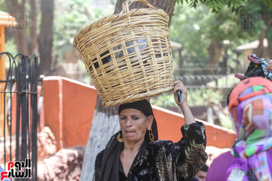 فيتشر المرأة المصرية (8)