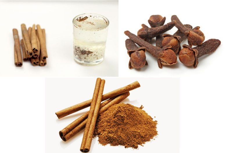 Cinnamon-and-Cloves-Lower-Blood-Sugar-And-Triglycerides_dailyhealthyfoodtips