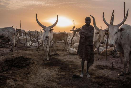 حيوانات-فى-جنوب-السودان