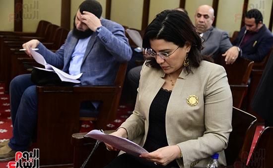 صور لجنة الشئون التشريعية والدستورية (4)
