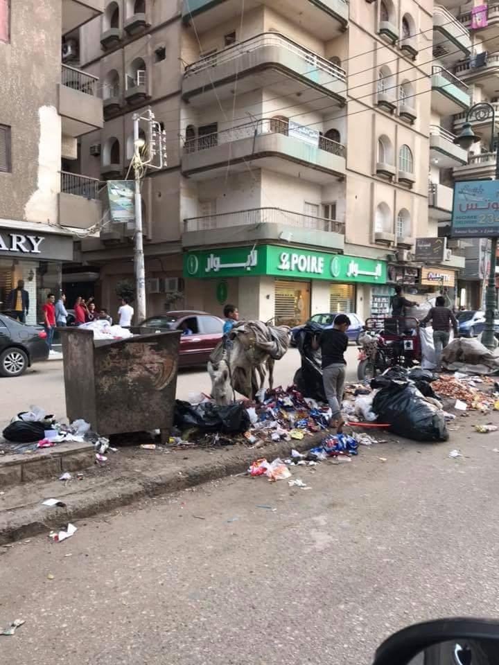 انتشار القمامة بشارع طلبة عويضة (7)