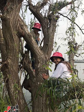 الطفلة الأجنبية تتسلق الأشجار