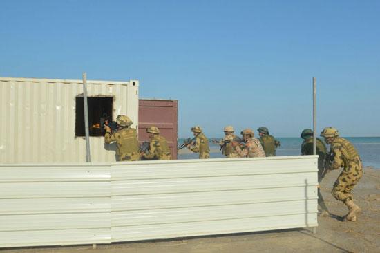 صور مناورات درع الخليج (6)