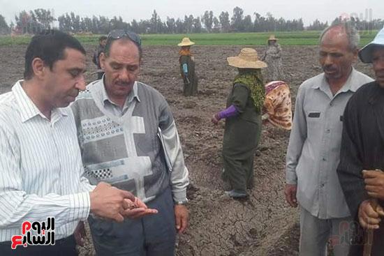 زراعة-محصول-اليقطين-لأول-مرة-في-مصر-(4)