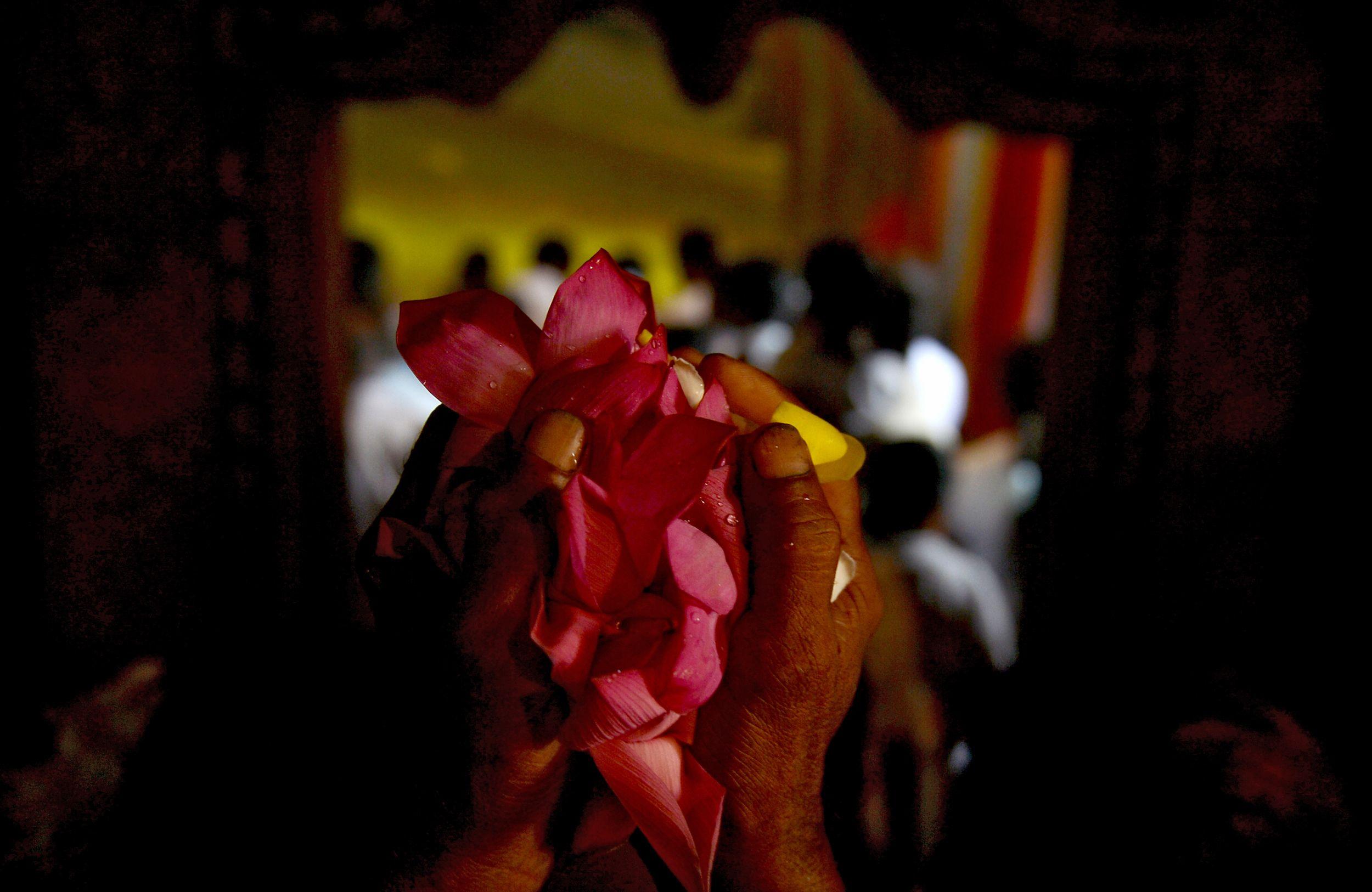 طقوس الاحتفال بذكرى ميلاد بوذا فى سريلانكا