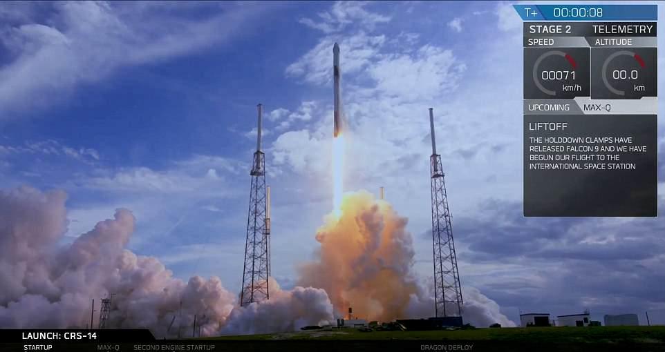 45732 %D9%84%D8%AD%D8%B8%D8%A9 %D8%A7%D9%86%D8%B7%D9%84%D8%A7%D9%82 %D8%A7%D9%84%D8%B5%D8%A7%D8%B1%D9%88%D8%AE SpaceX تنجح فى إطلاق صاروخا معاد تدويره على متنه إمدادات للمحطة الدولية