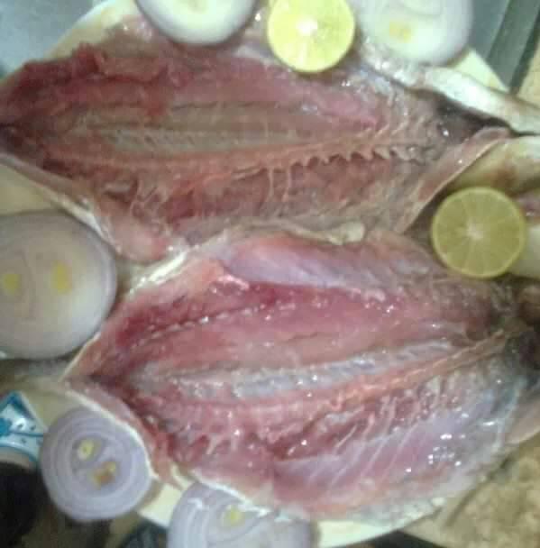 سمك البورى بعد نضجة