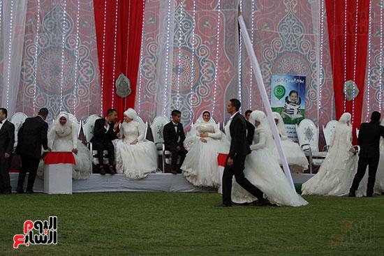 صور حفل زفاف جماعى لـ120 عريس وعروسة داخل دريم بارك فى يوم اليتيم (24)