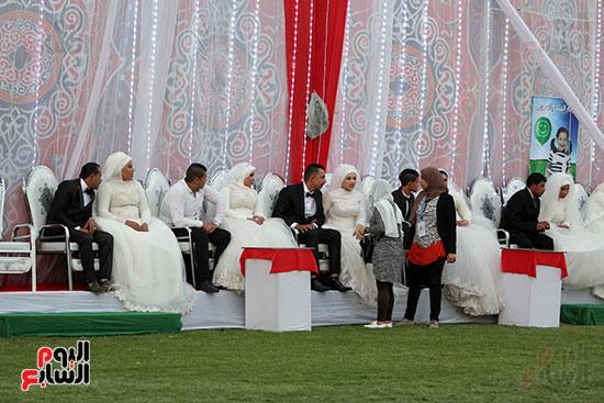 صور حفل زفاف جماعى لـ120 عريس وعروسة داخل دريم بارك فى يوم اليتيم (27)