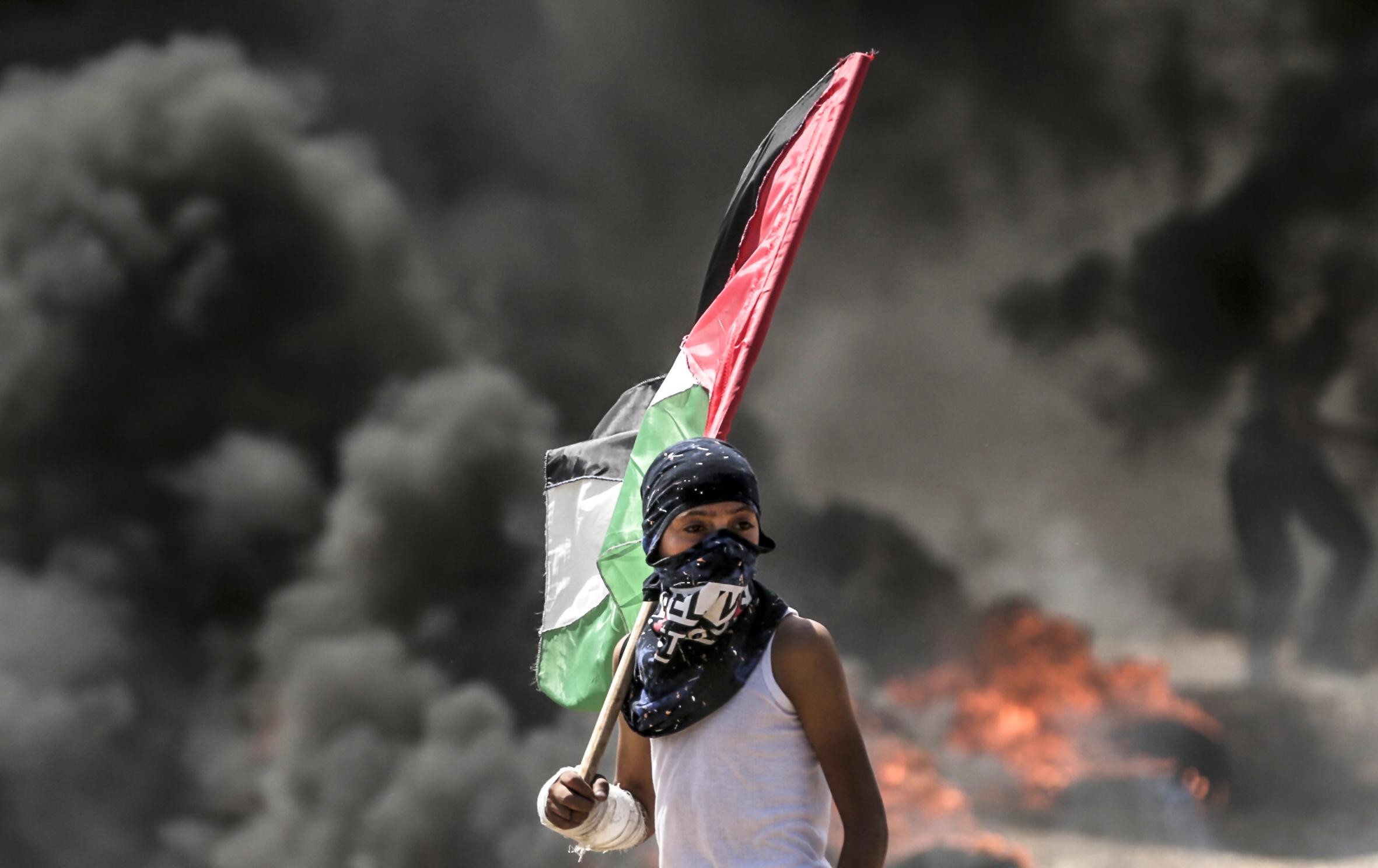 فلسطينى