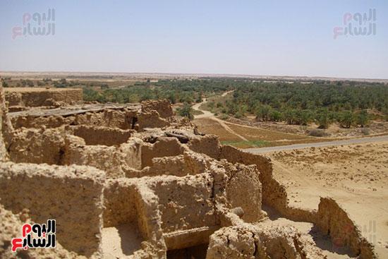 """قارة أم الصغير"""" أصغر واحة مصرية معزولة فى الصحراء"""