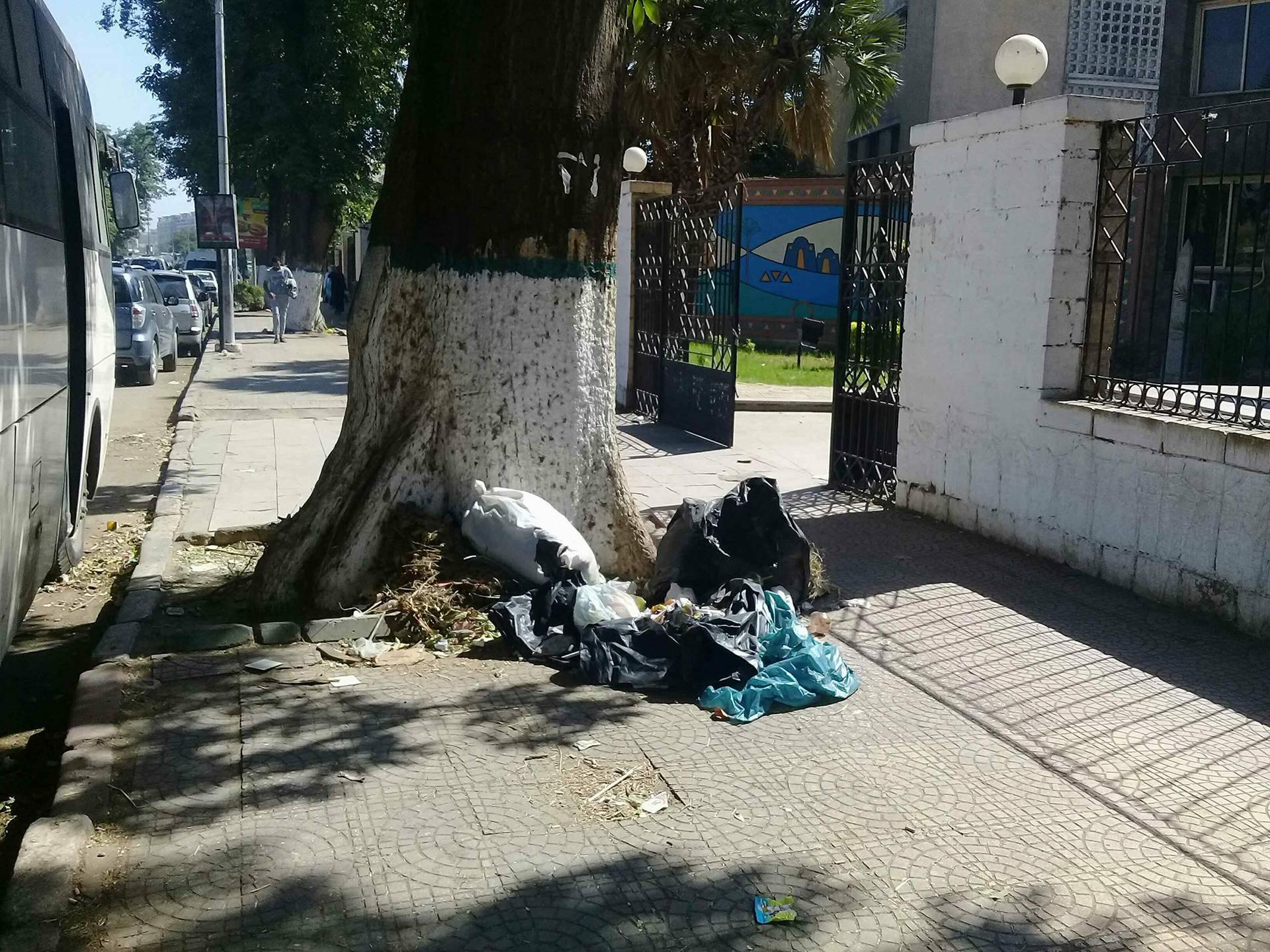 انتشار القمامة أمام قصر ثقافة أسوان