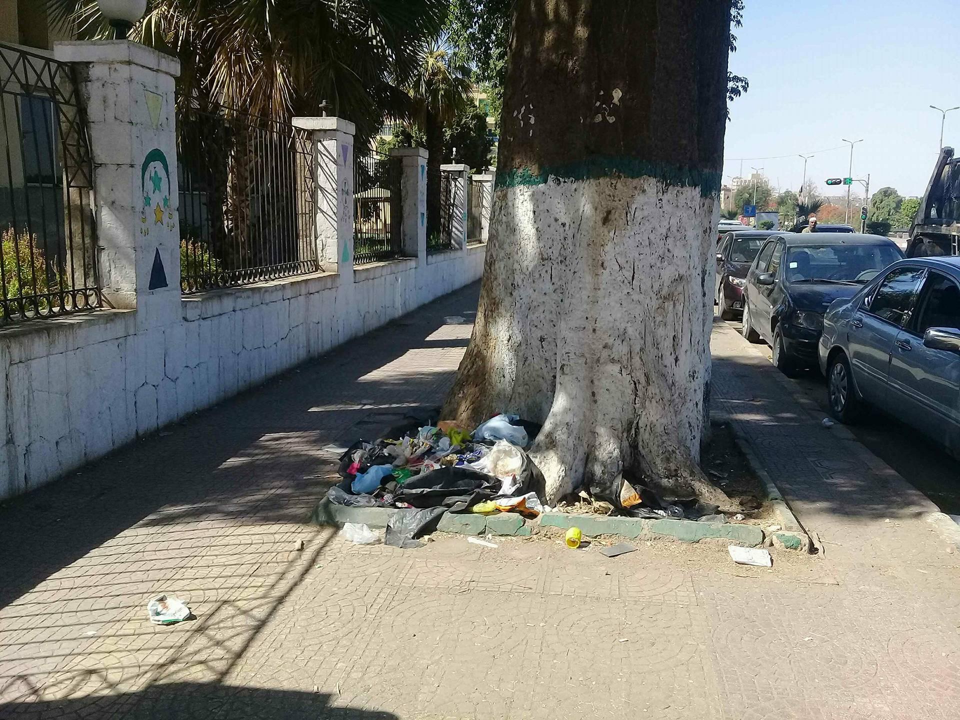انتشار القمامة بكورنيش النيل