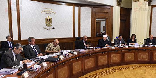 صور اجتماع مجلس الوزراء (11)