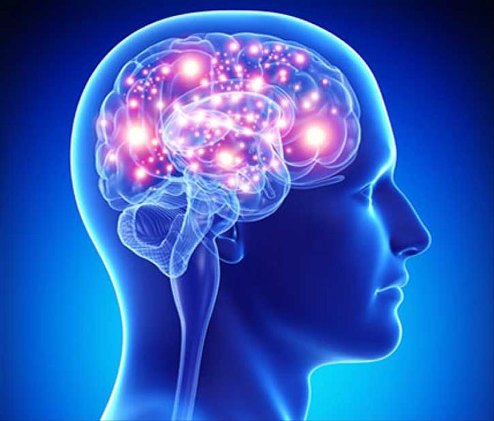 الصيام والمخ 1