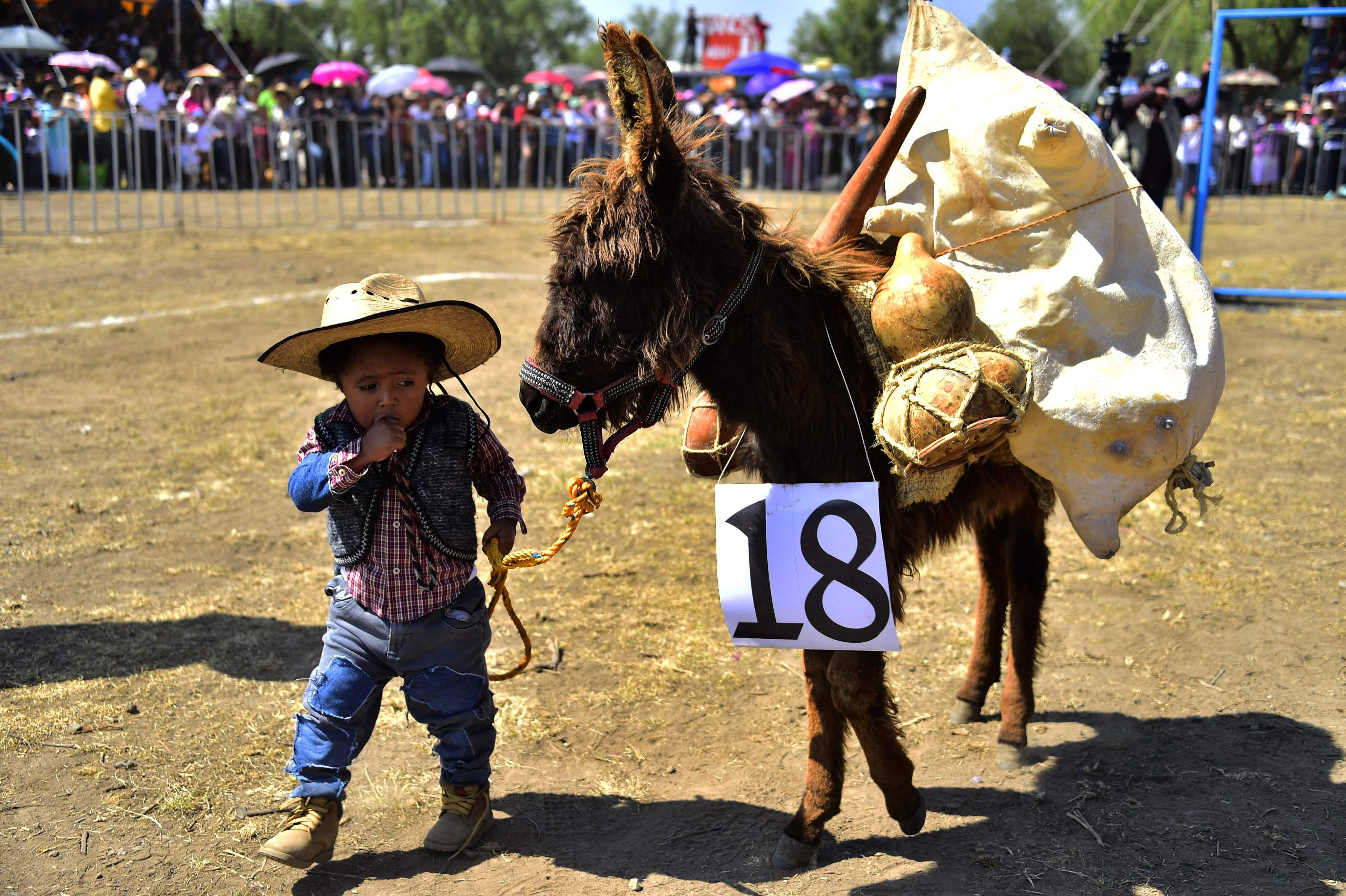 طفل مشارك في المهرجان