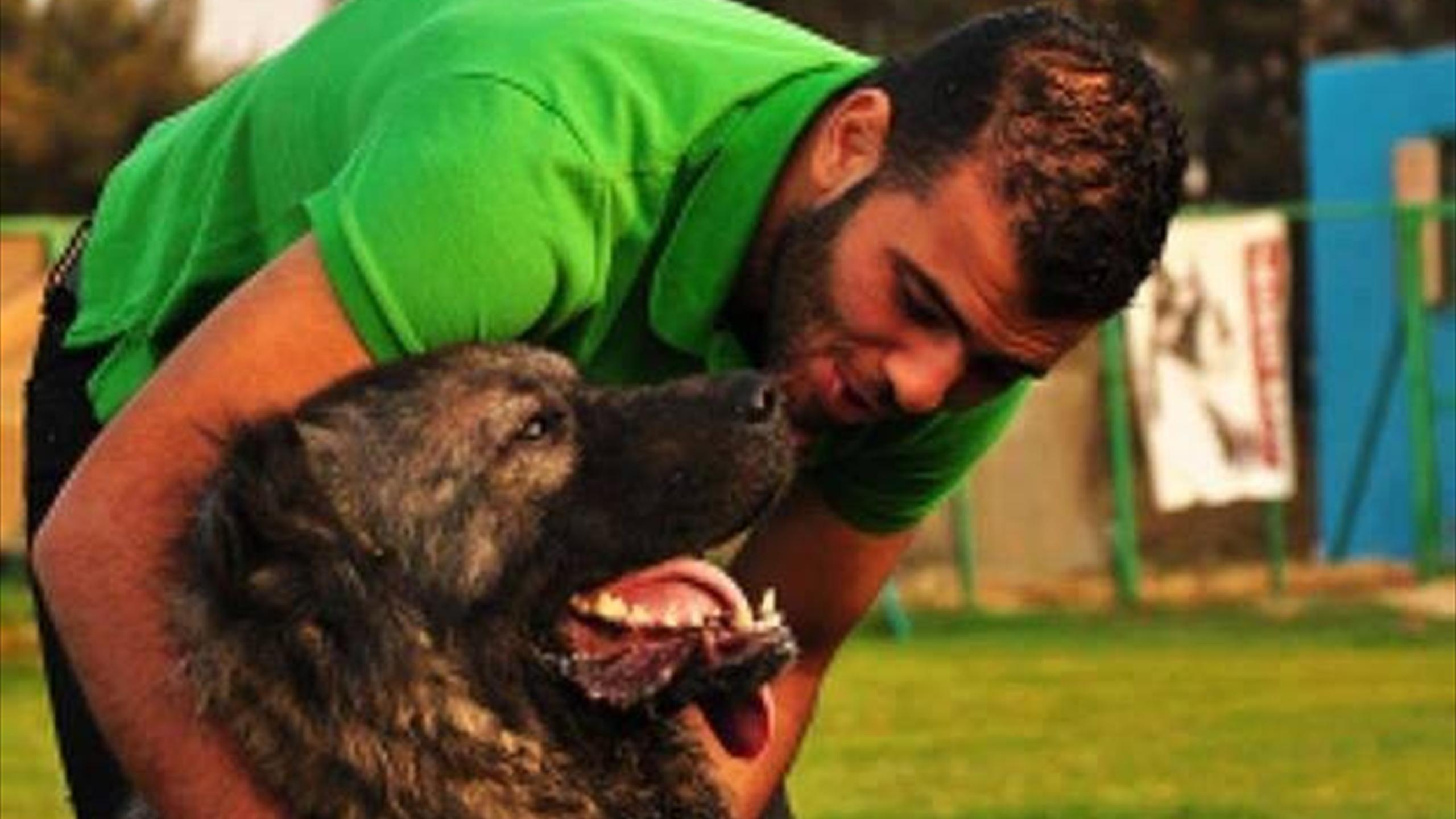 نتيجة بحث الصور عن كلب عماد متعب