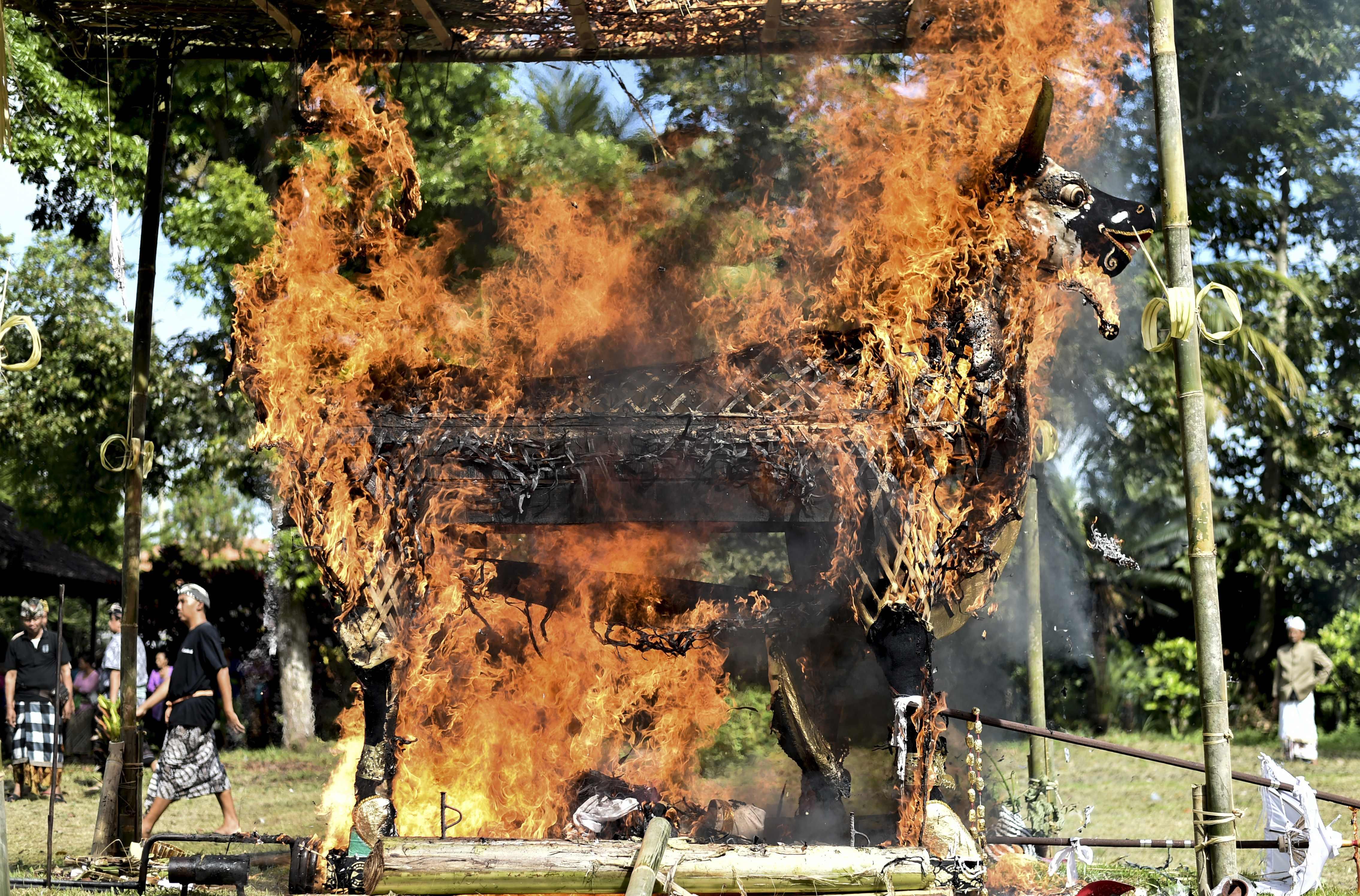لحظة اشعال النيران فى إحدى الجثث