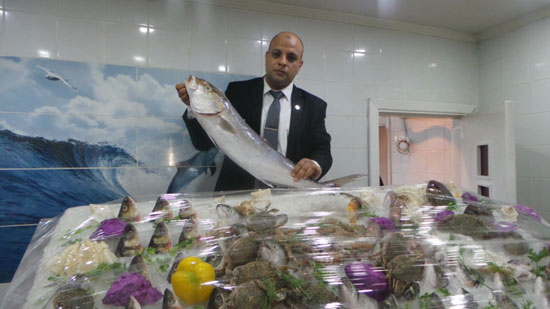 نرصد أبرز الأكلات الشهيرة بمحافظات مصر