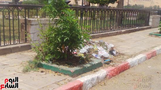 نتشار-القمامة-فى-أسوان-رغم-انطلاق-حملة-المحافظ-بالنظافة-(4)