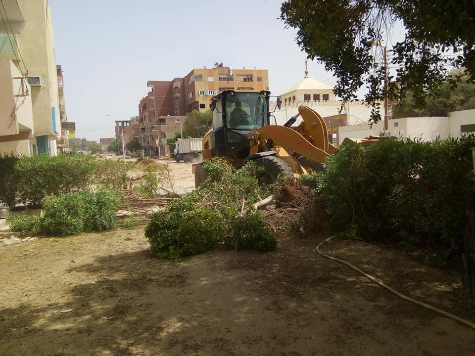 رفع الأشجار والإشغالات