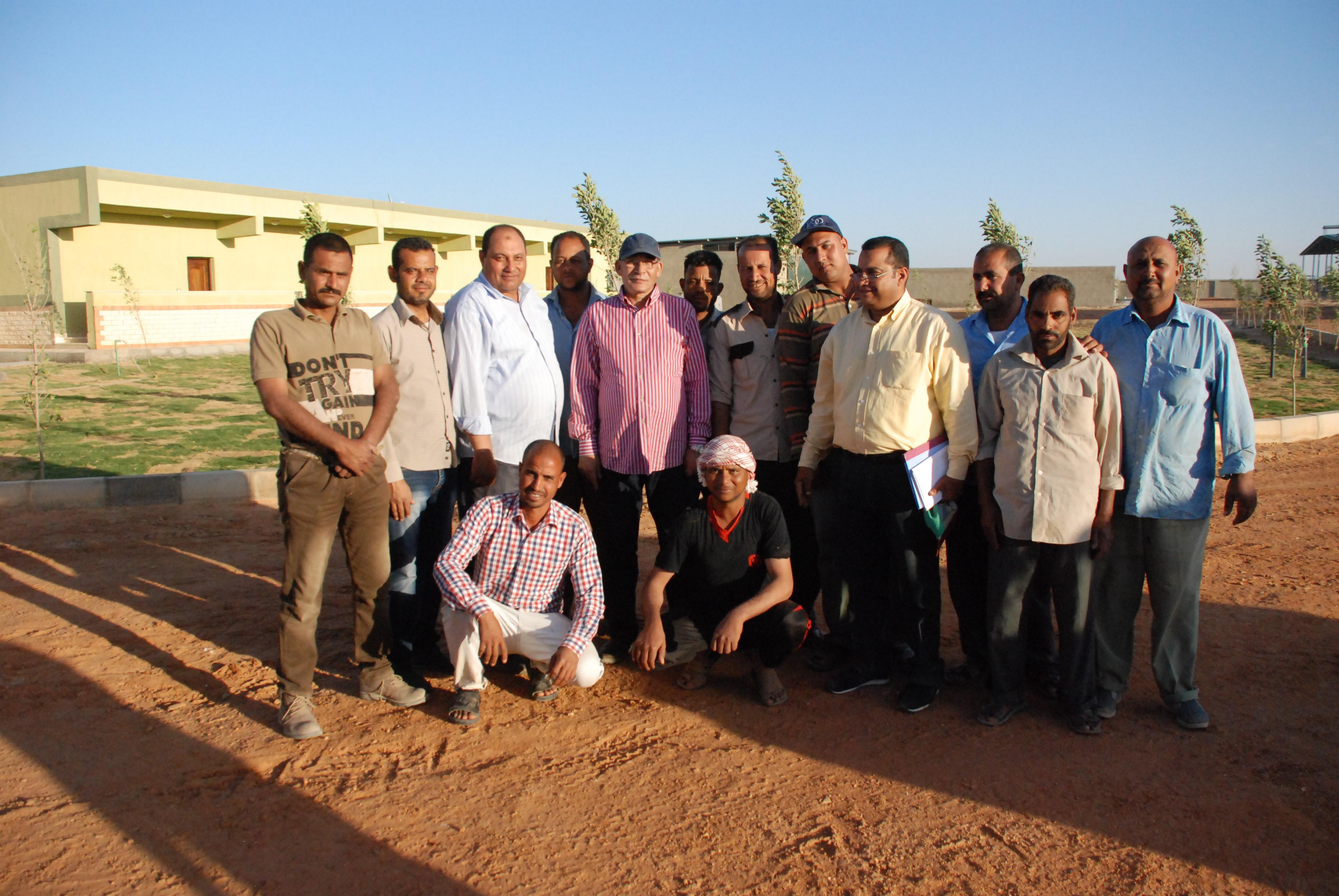 المرحلة الأولى من مشروع الـ20 ألف فدان بغرب غرب المنيا  (7)