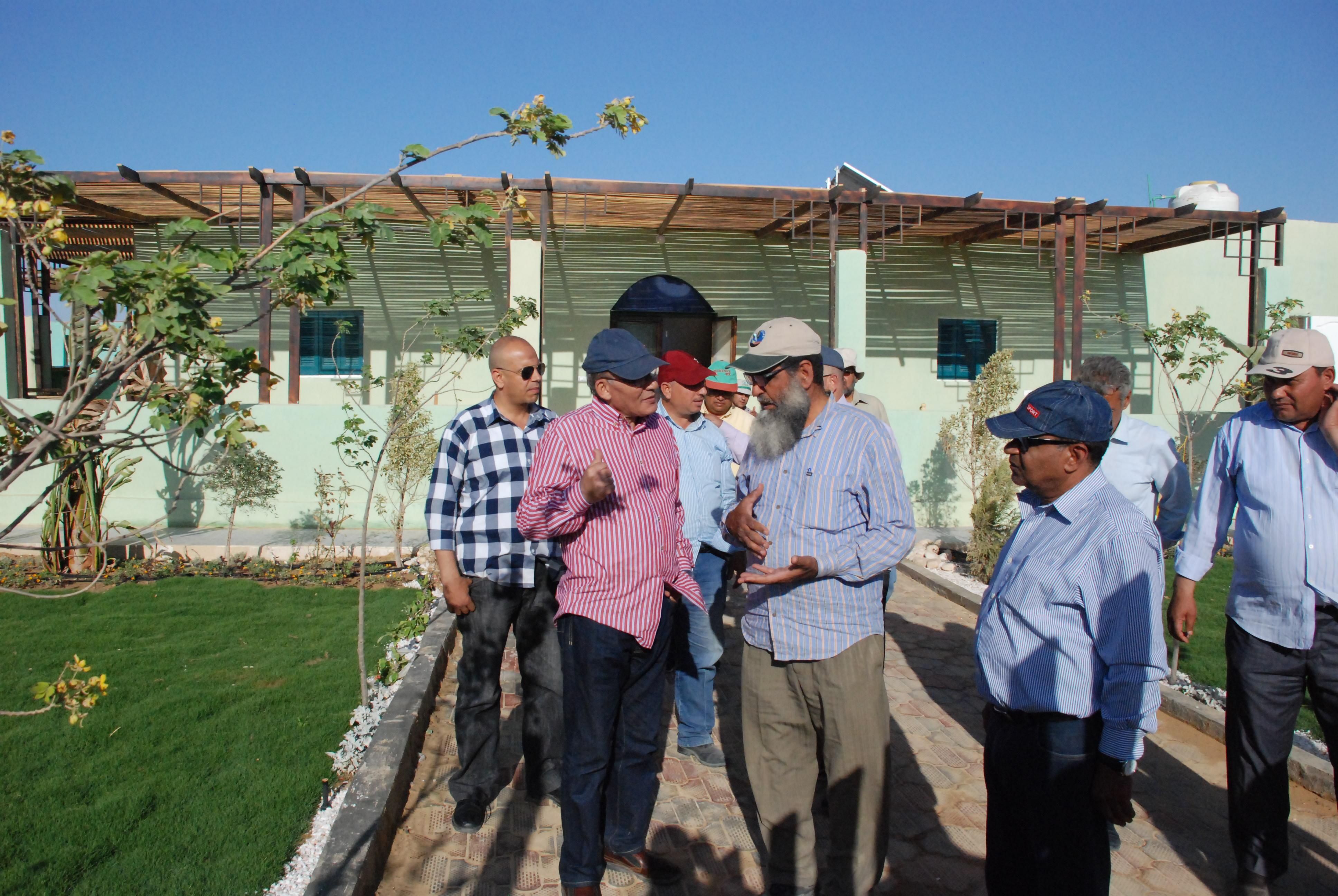 المرحلة الأولى من مشروع الـ20 ألف فدان بغرب غرب المنيا  (13)