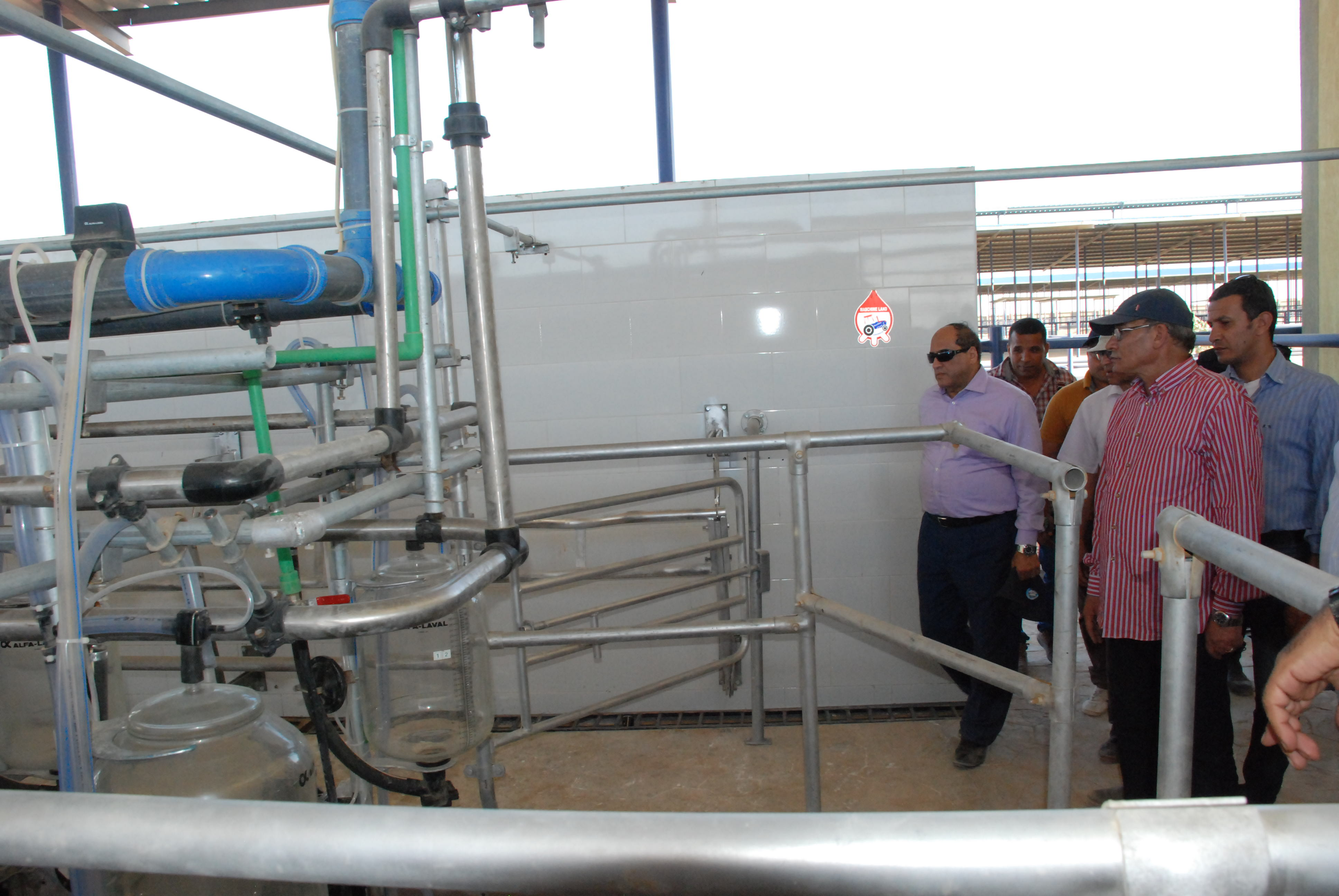 المرحلة الأولى من مشروع الـ20 ألف فدان بغرب غرب المنيا  (15)