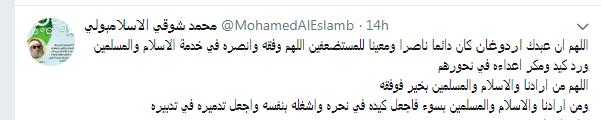 محمد شوقى الاسلامبولى