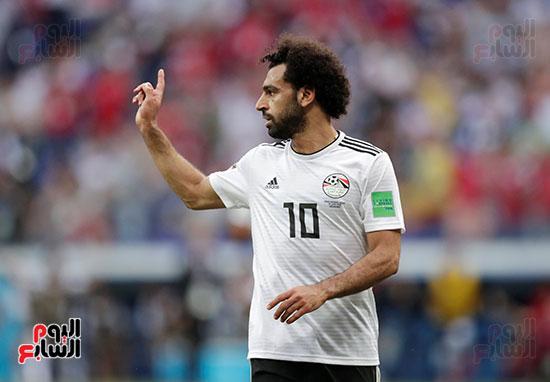 مصر والسعودية (7)