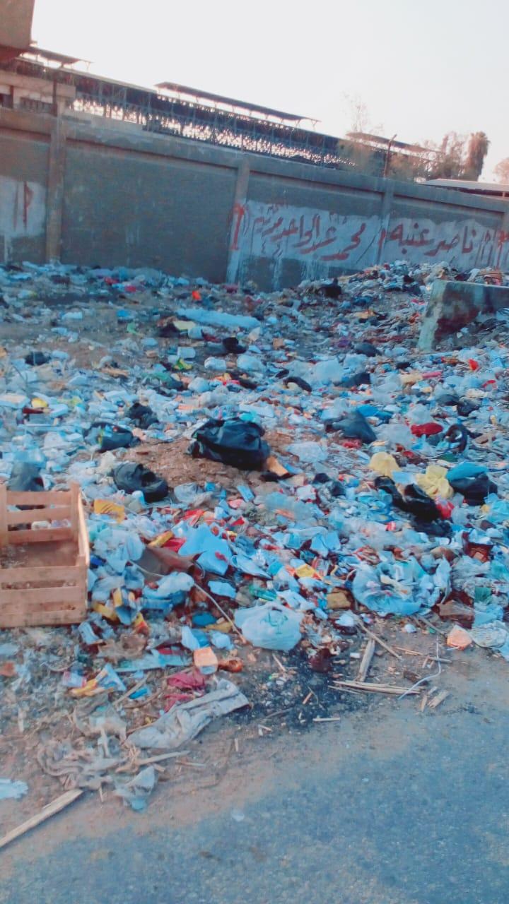 القمامة بأبو زعبل البلد فى القليوبية (1)