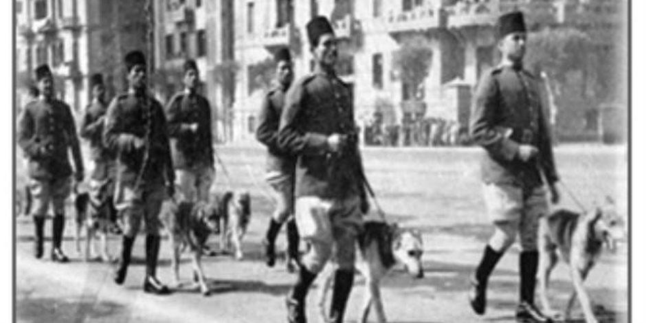 طابور عرض لسلاح الكلاب