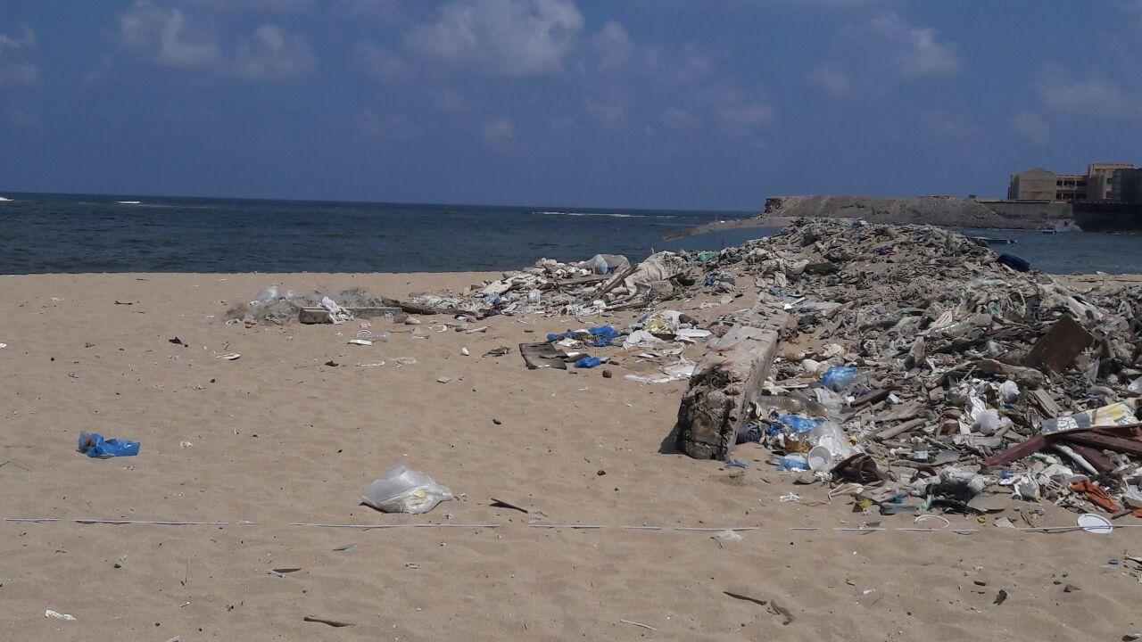 بدء حملة شباب بيحب مصر لنظافة شاطئ الانفوشى بالإسكندرية (6)
