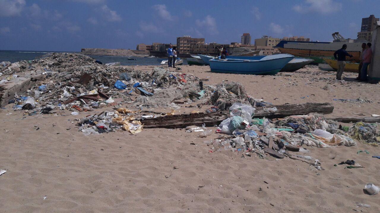 بدء حملة شباب بيحب مصر لنظافة شاطئ الانفوشى بالإسكندرية (8)