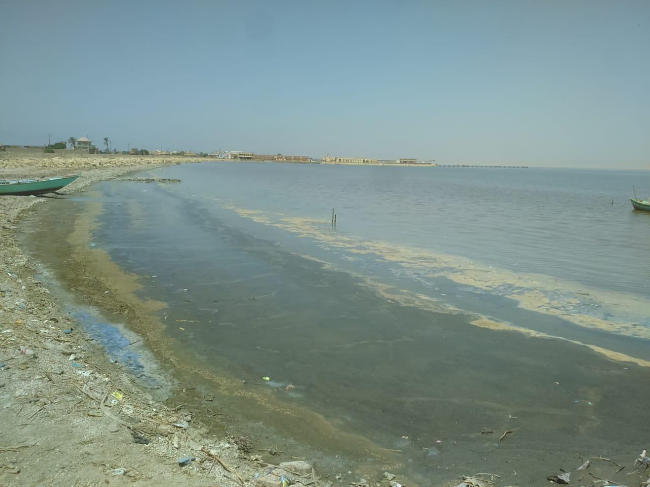 بشعار التغلب علي التلوث البلاستيكي إنطلاق فاعلية شباب بتحب مصر للاحتفال باليوم العالمي للبيئة (4)