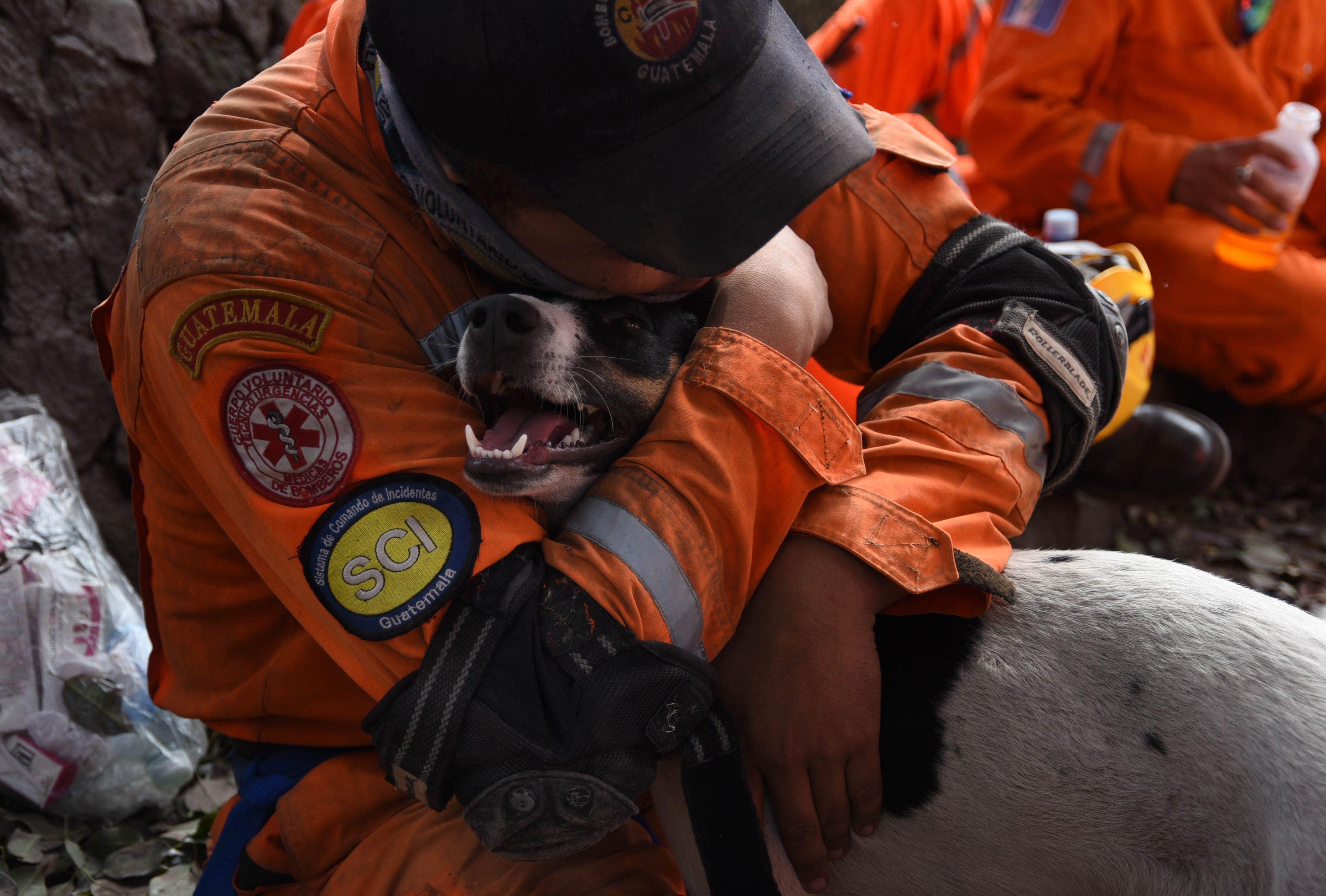 عامل إغاثة يحضن كلب