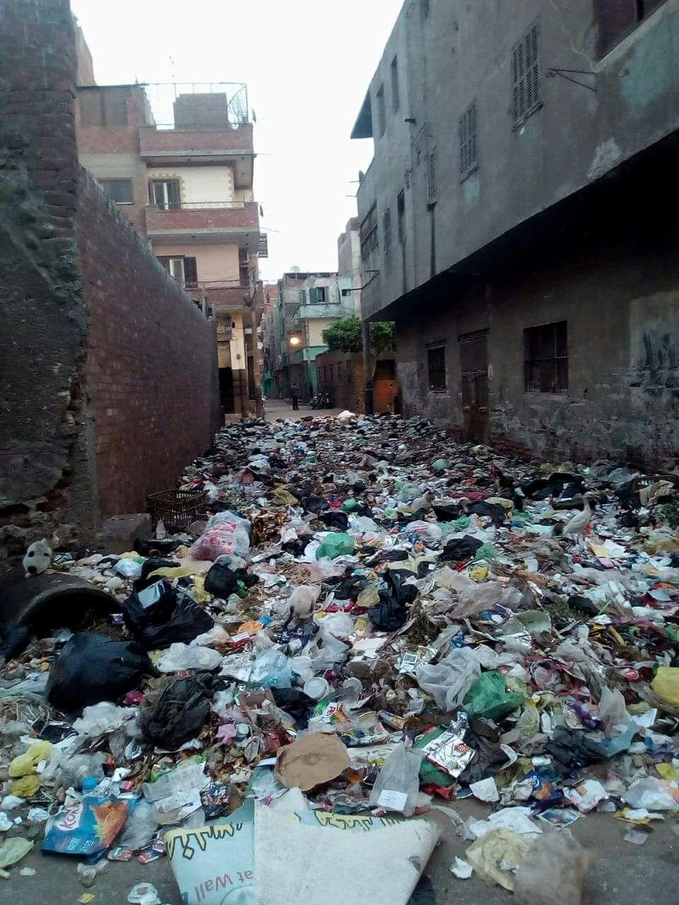 القمامة بجوار الوحدة الصحية بمنطقة الورش (1)